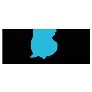 Diota